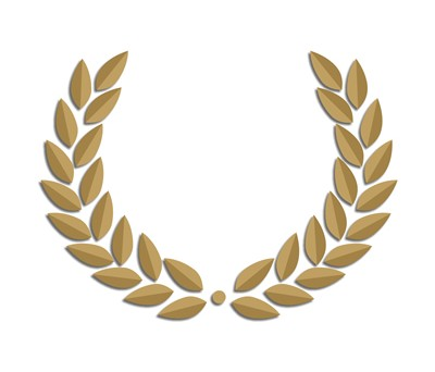 Riconoscimenti e Awards