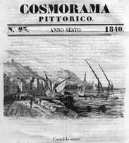 cosmora
