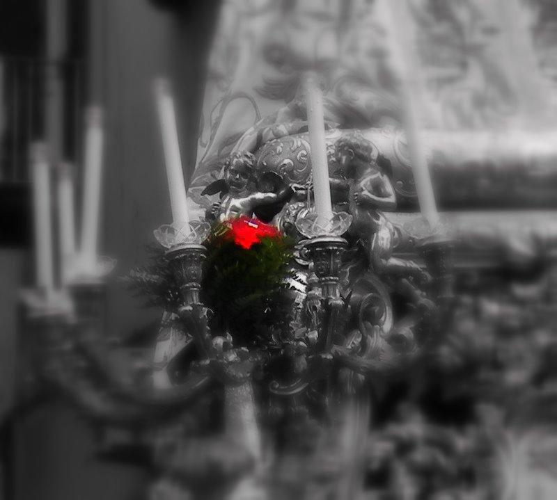 Sacra rosa