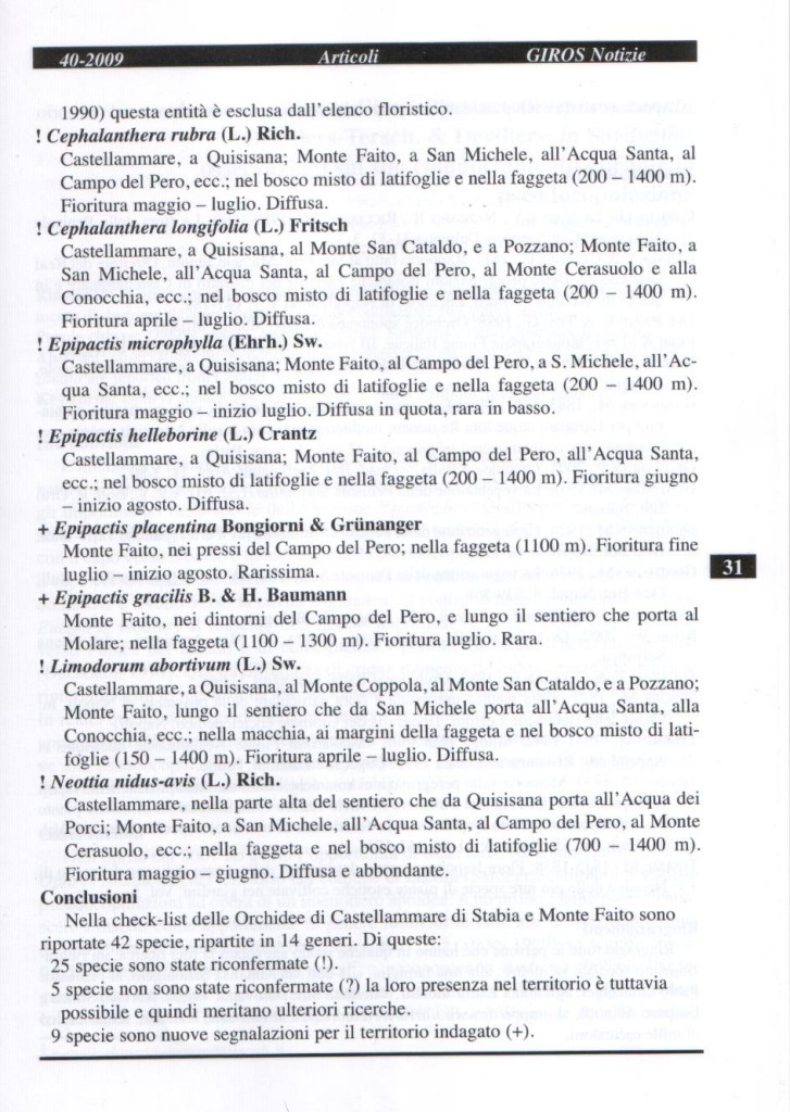 GIRNOS Notizie n. 40 pag. 31