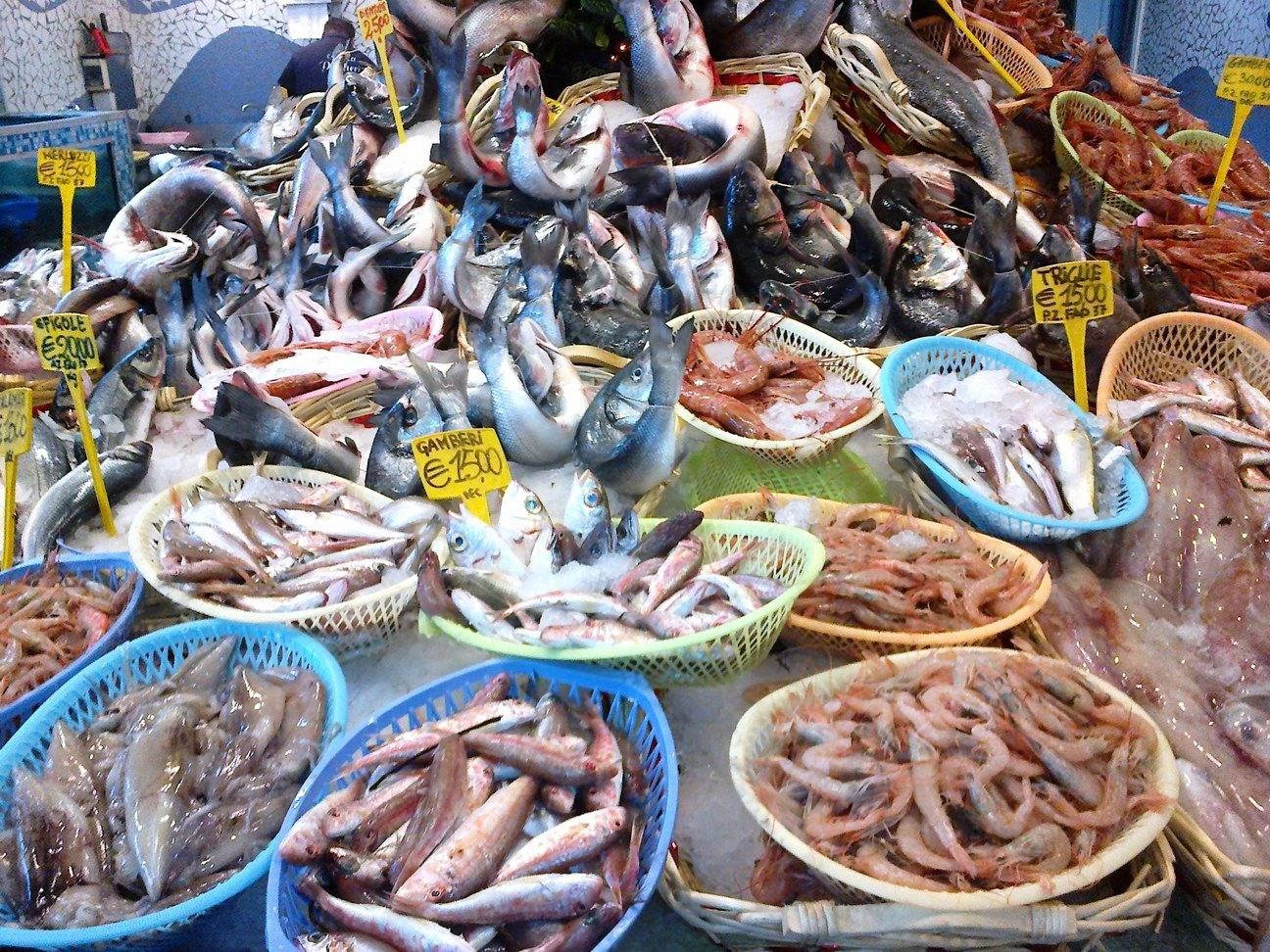 Pesci molluschi e crostacei libero ricercatore - Pagina di colorazione del pesce ...