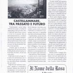 pagina 8 n.0 0