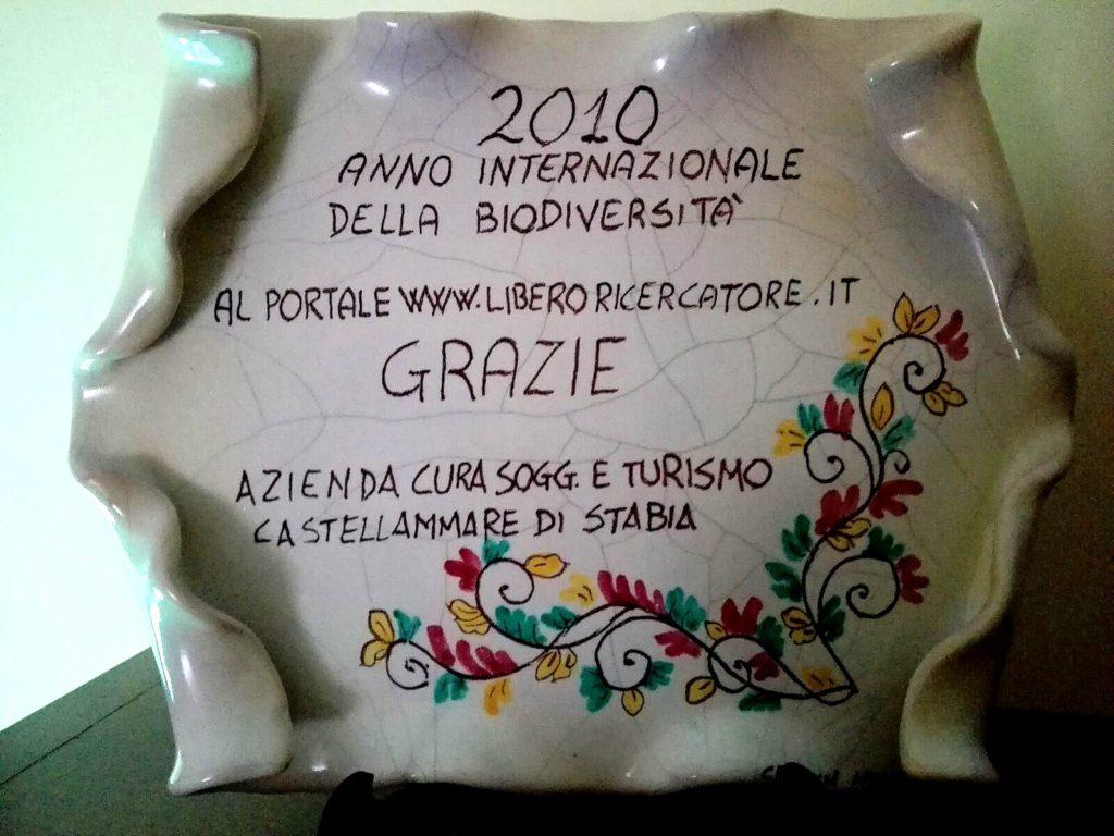 Anno 2010 - Riconoscimento ACST