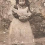 1950 pachianella