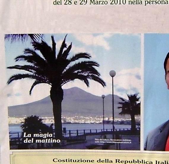 EdisFoto_particolare_elezioni_2010