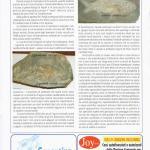 pagina 17 maggio2006