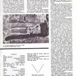 pagina 19 sett 78
