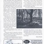 pagina 26 ago sett 2007