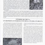 pagina16 marzo2006