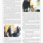pagina8 giugno2006