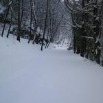 Monte Faito, nevicata 2012