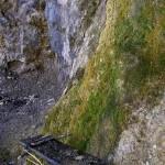 Acqua Santa: la sorgente