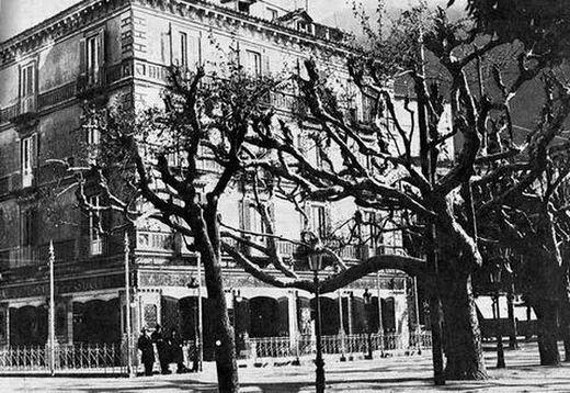 Platano Villa Comunale