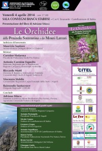 locandina orchidee