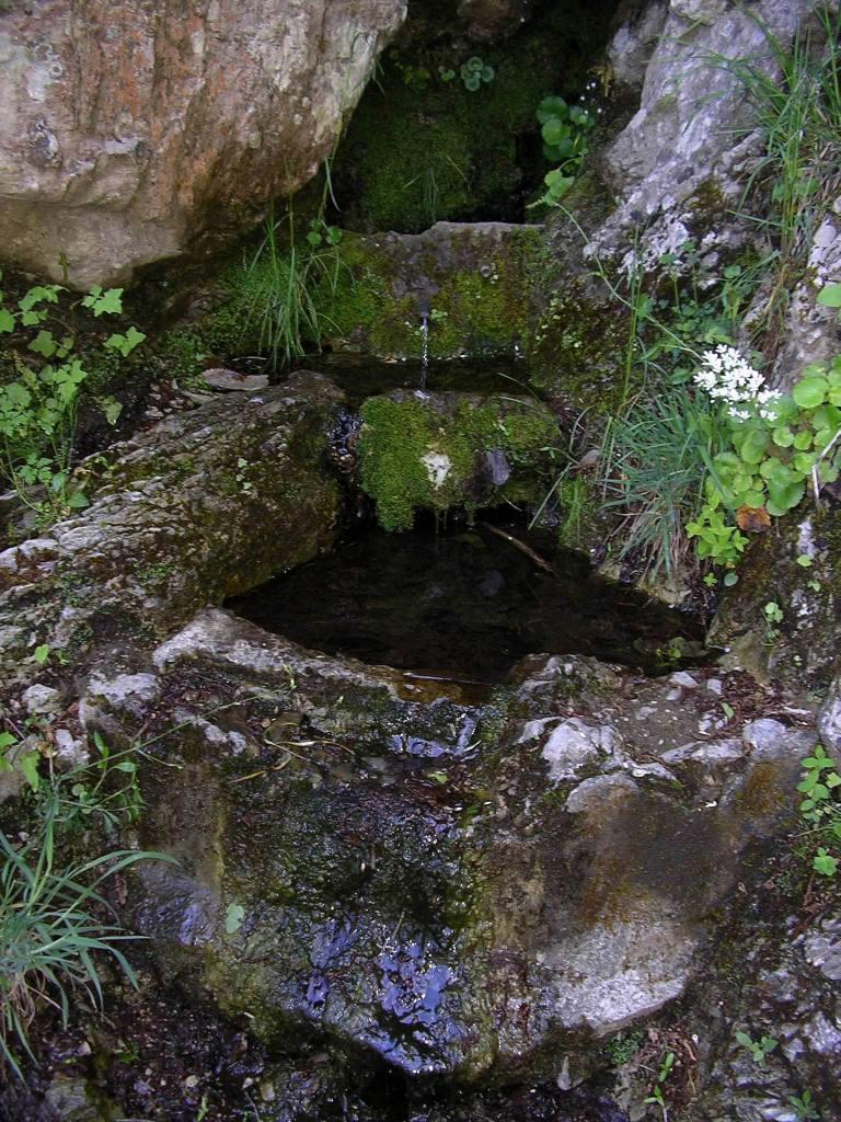 La sorgente dell'Acqua dei Porci