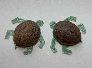 Tartarughine ricavate dai gusci di noce (foto F. Fontanella).
