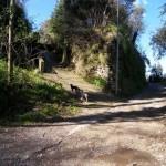 Via Vecchia Pozzano