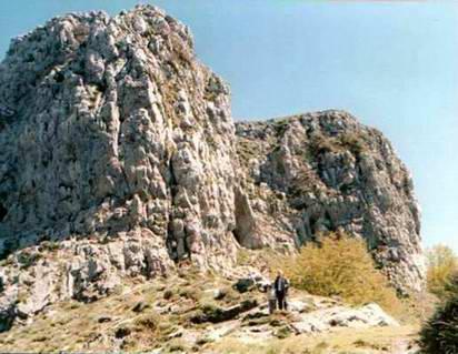 Castellammare di Stabia: la vegetazione rupicola (foto Fontanella).