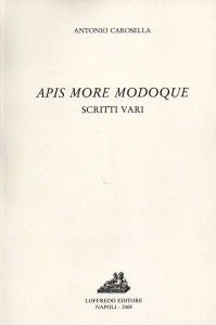 apis_more_modoque