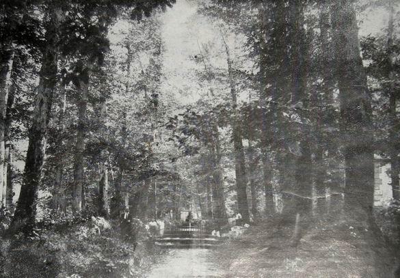 Fontana del Re