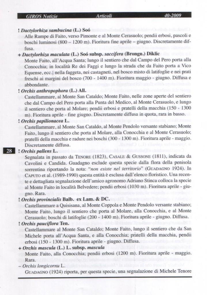 GIRNOS Notizie n. 40 pag. 28