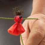 Infilatelo trasversalmente nella parte superiore del fiore.