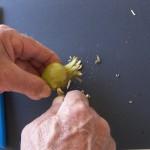 Conficcate la punta ben dentro al frutto.