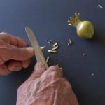Con un coltello appuntite un'estremità del rametto.