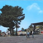 Belvedere (2)