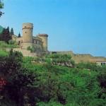 Il Castello (24)