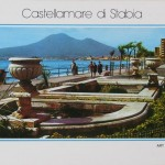La fontana di Corso Garibaldi (8)