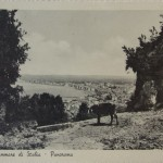 Panorama (16)