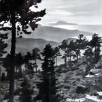 Panorama con Capri (4)
