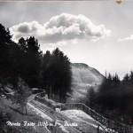 Panorama e pinete (3)