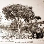 Verso il colle di Scanzano