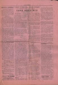 vc nm7 pagina2small