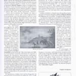 pagina 15 giugno 2002