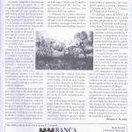 pagina 19 agosto 1999