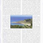 pagina 29 nov dic 2008