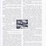 pagina 23 mag giu 2010