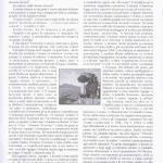 pagina 31 mar apr 2009