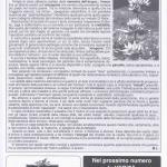 pagina17 genn 1999