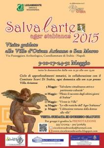 salvalarte 2015