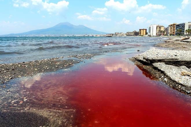 """Castellammare: fiume di """"sangue"""" e di dolore"""