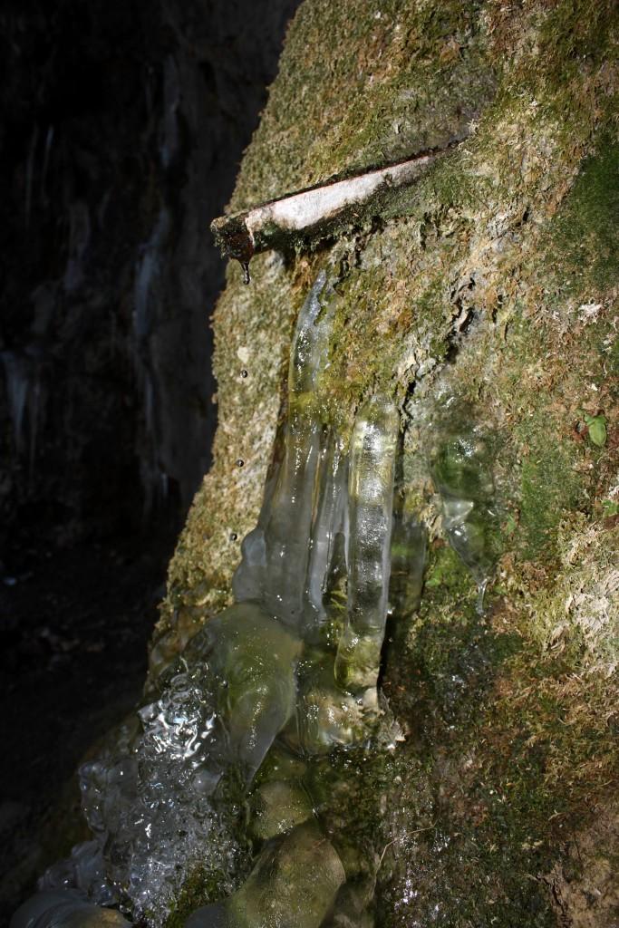 L'Acqua Santa: oasi naturale inestimabile (foto Maurizio Cuomo)
