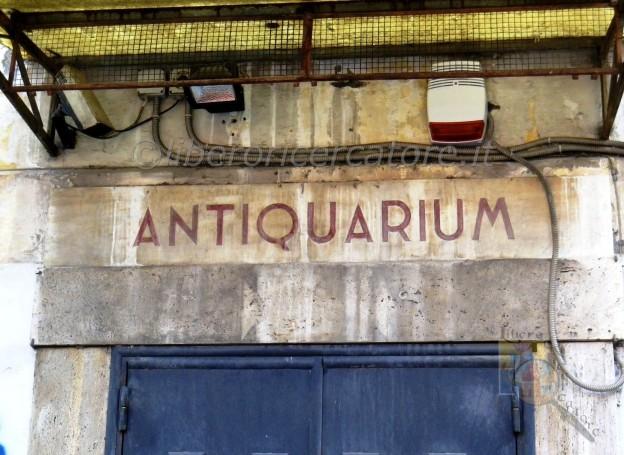Antiquarium Stabiano (foto Ferdinando Fontanella)