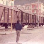 Terremoto 1980 (foto Antonio Cimmino 07)