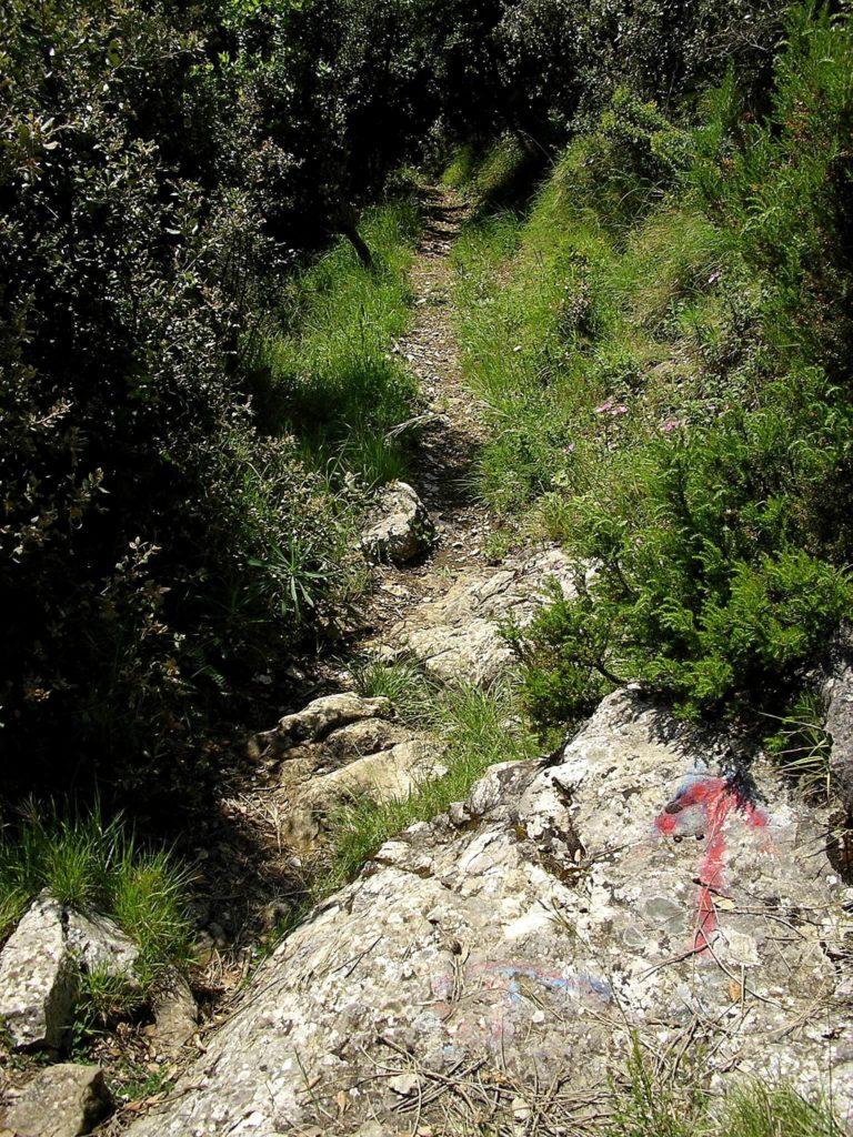 Il percorso sterrato (foto Maurizio Cuomo)