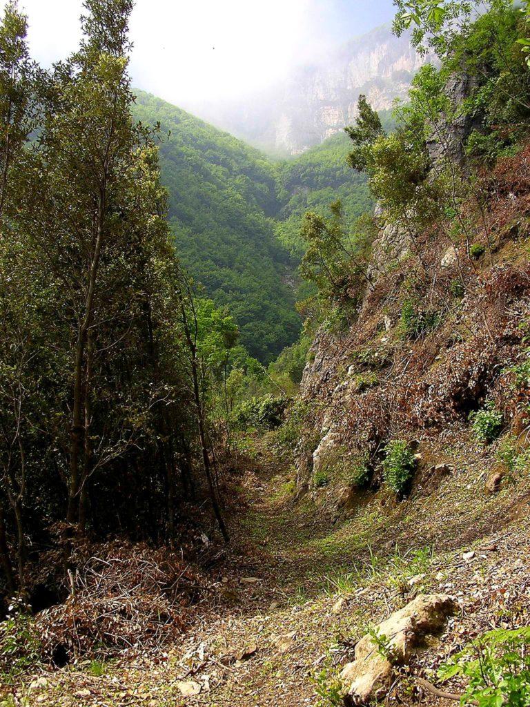 Il primo tratto del sentiero (foto Maurizio Cuomo)
