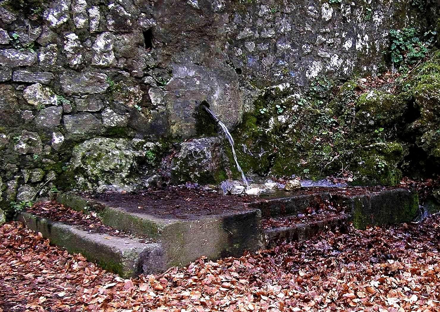 L'Acqua della Lontra (foto Maurizio Cuomo)